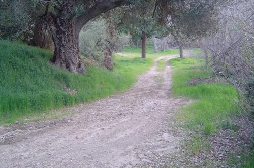 Road to lower acreage