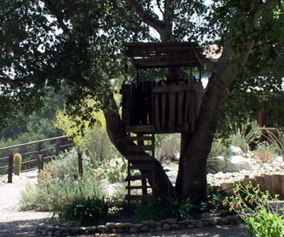 Harnage Ranch treehouse